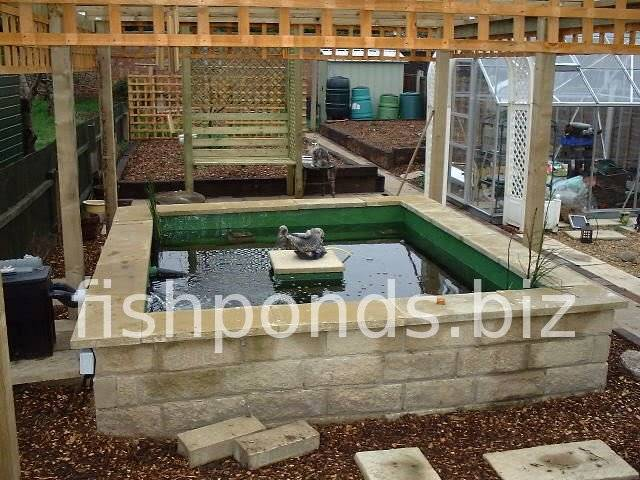 Building a concrete koi fish pond for Concrete koi pond design