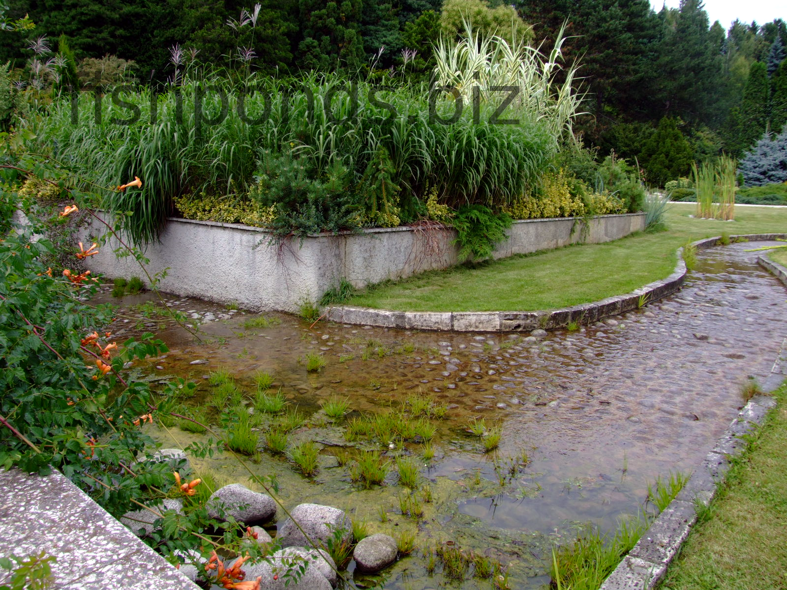Biofilters water garden biofilters free engine image for for Garden fish pond ideas